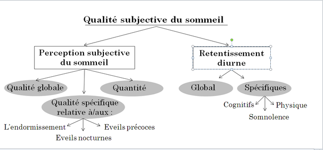 Description des dimensions de l'Indice Capital Sommeil